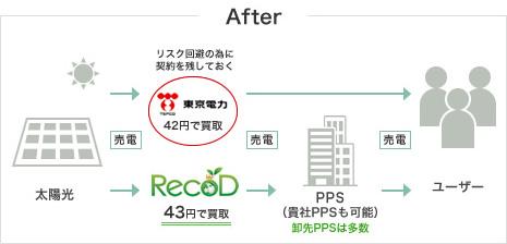 れこどと電力会社による太陽光発電所で発電された電気買取の仕組み図(after)