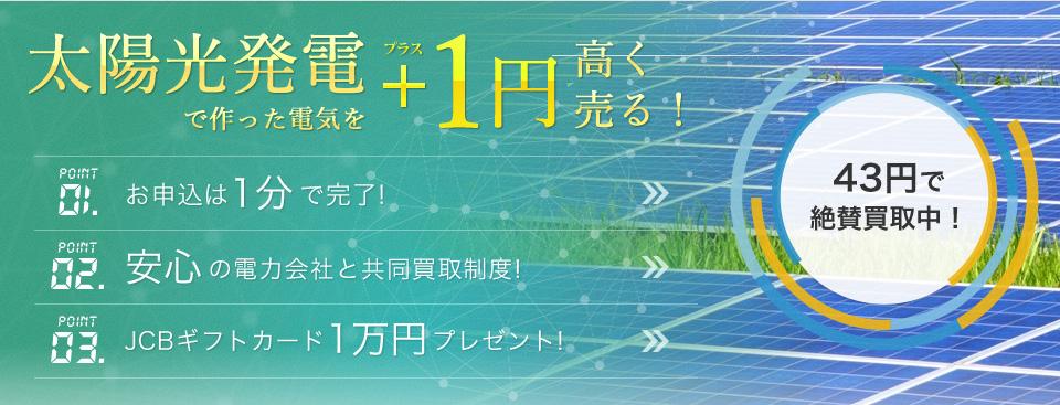 太陽光発電で作った電気を+1円高く売る(低圧)