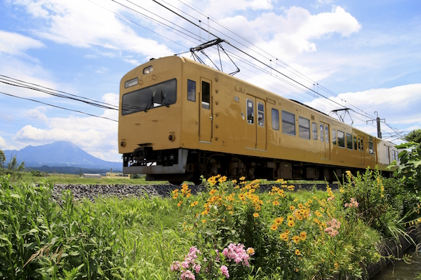 img_train01